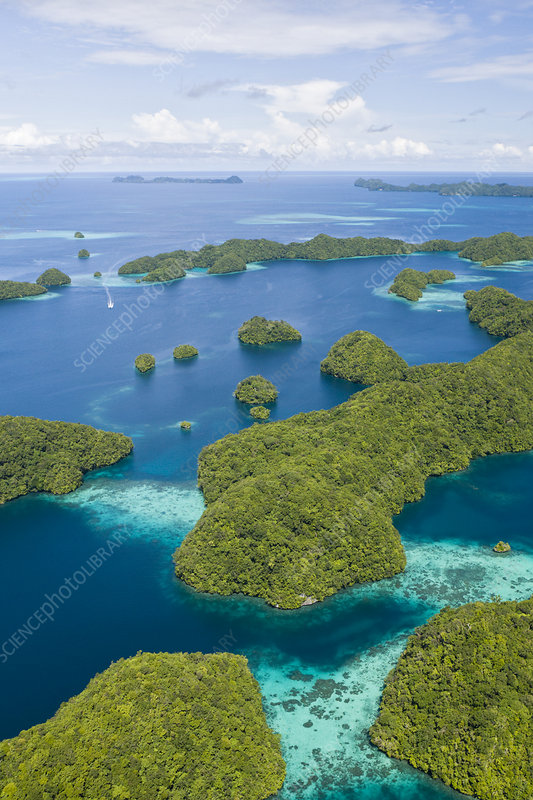 Rock islands of Palau. Micronesia