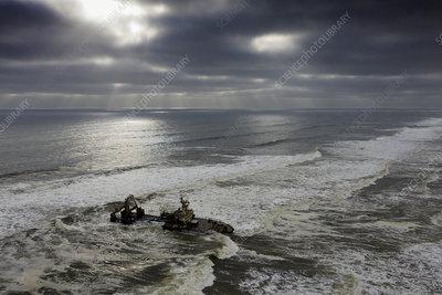 Shipwreck Zeila, Skeleton Coast, Namibia