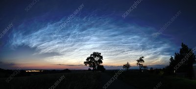 Noctilucent clouds over trees