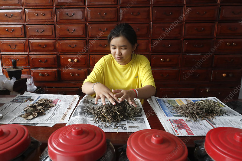 Woman working in a traditional chinese pharmacy