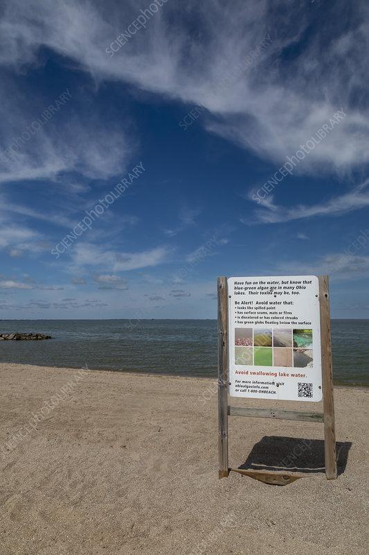 Toxic algae in Lake Erie, Ohio, USA