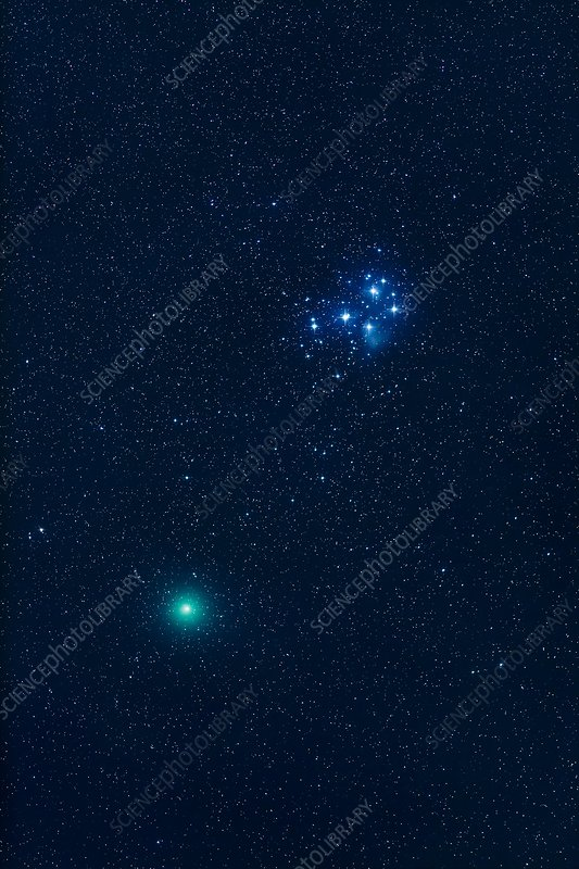 Comet 46P Wirtanen and the Pleiades star cluster