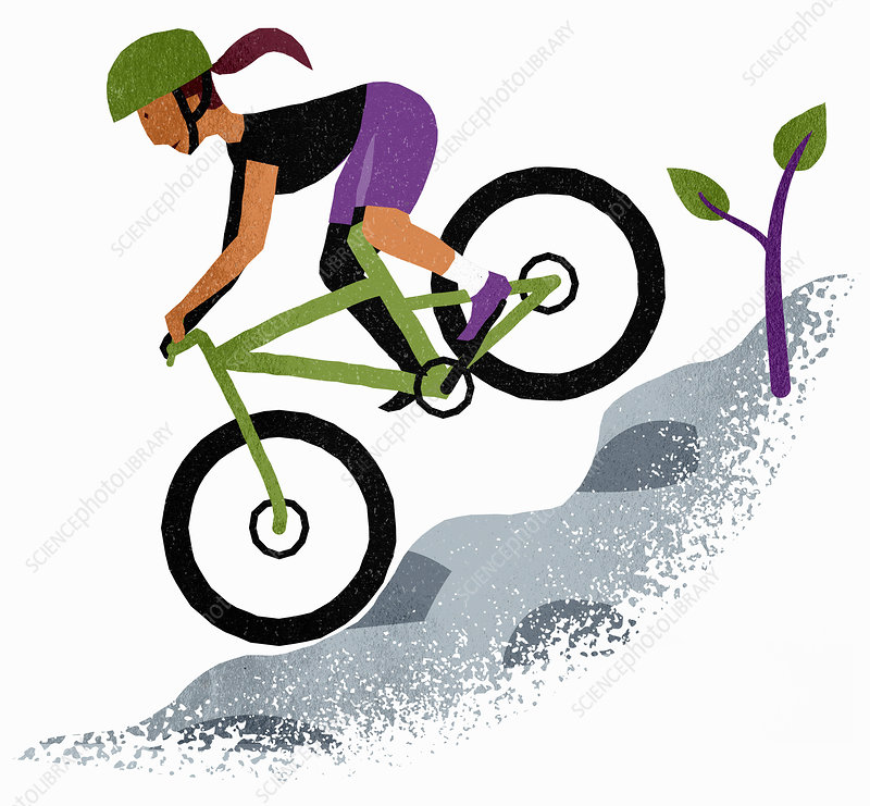 Woman mountain biking, illustration