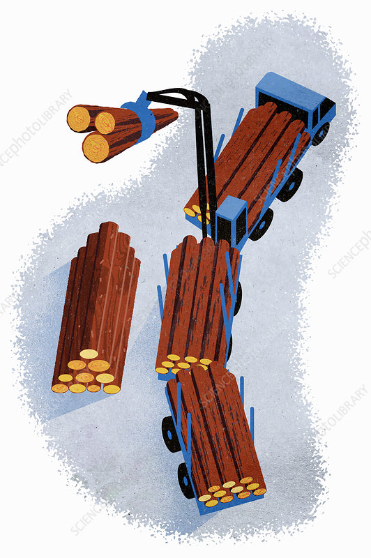 Logging truck, illustration