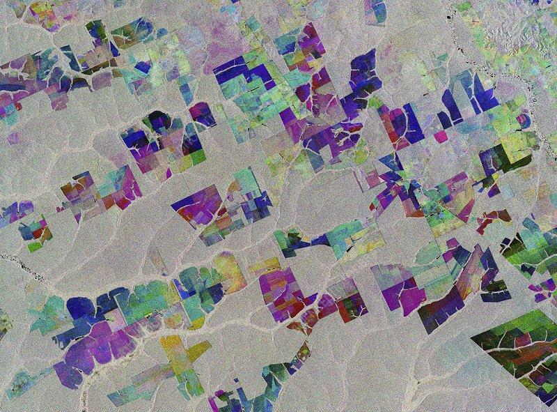 Deforestation in Brazil, satellite radar image