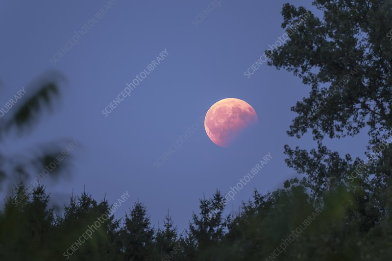 Blood moon during partial lunar eclipse, Germany