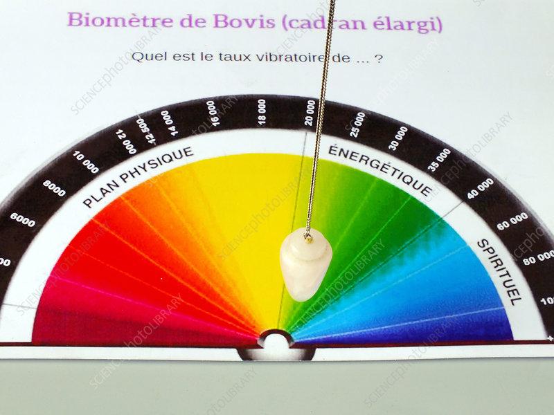 Bovis biometer