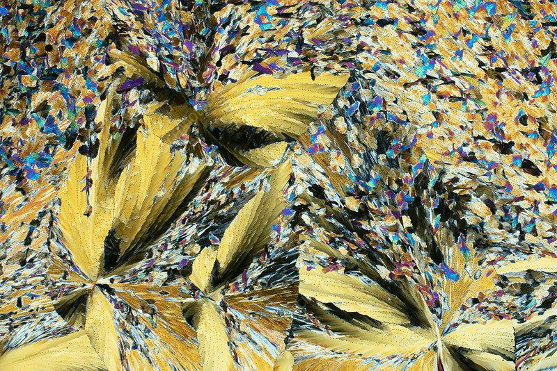 Vitamins and antifebrin, polarised light micrograph