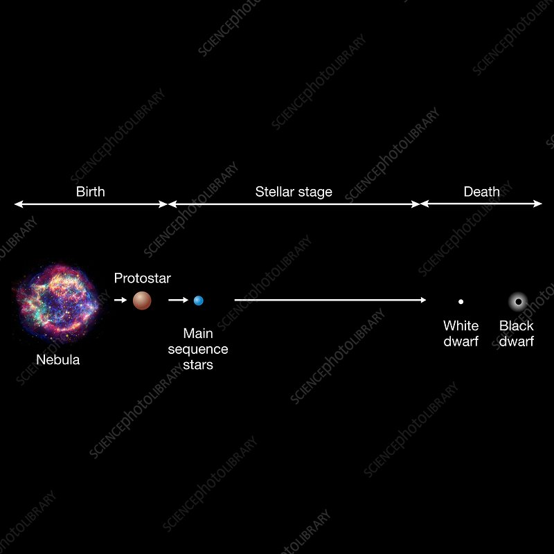 Life cycle of a very-low-mass star, illustration