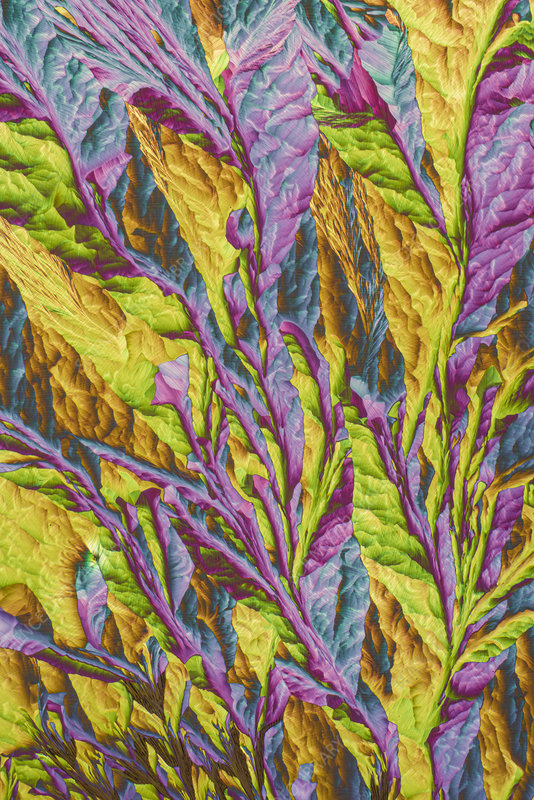 Sodium sulphate, polarised light micrograph