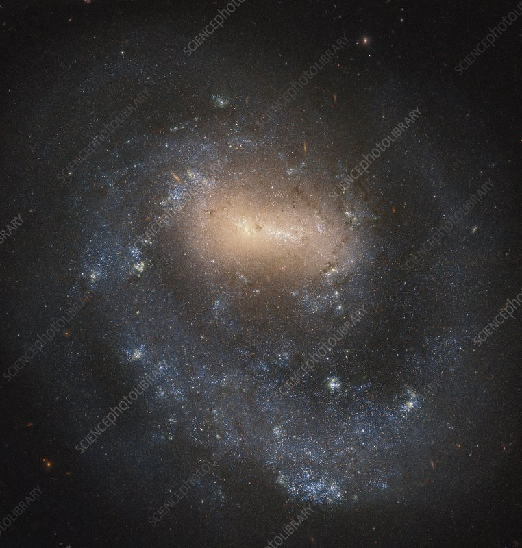 Barred spiral galaxy, Hubble image