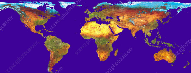 Worldwide vegetation map