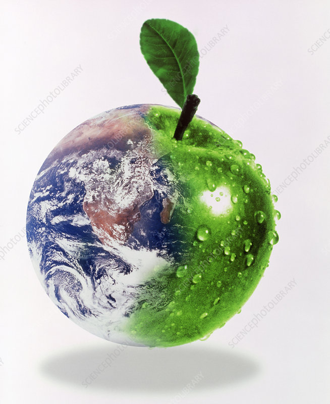 Computer artwork of half Earth and half apple