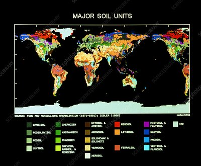 Computer map of global soil types