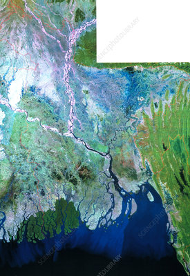 True-colour Landsat satellite mosaic of Bangladesh