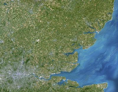 Essex, UK, satellite image