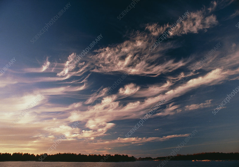 Cirrus 'Mare's tails' clouds