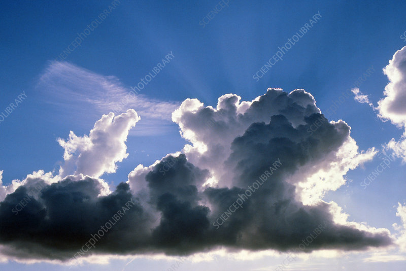 Cumulus cloud illuminated by the Sun