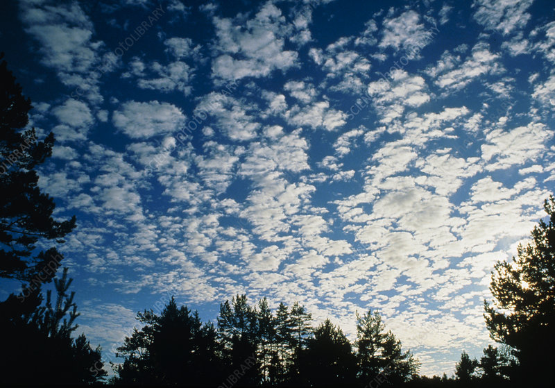 Cirrocumulus clouds forming a Mackerel Sky