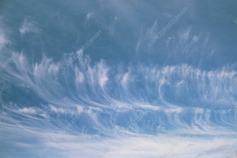 Lines of cirrus cloud Mare's Tails in the sky