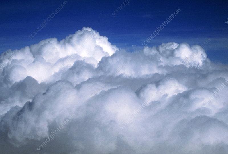 A bank of cumulus clouds