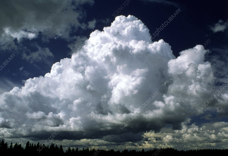 Billowing bank of cumulus clouds