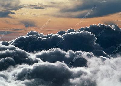 Cumulus cloud tops from Haleakala volcano