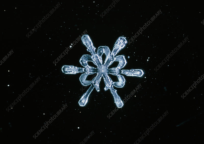 Macrophoto of a snow crystal
