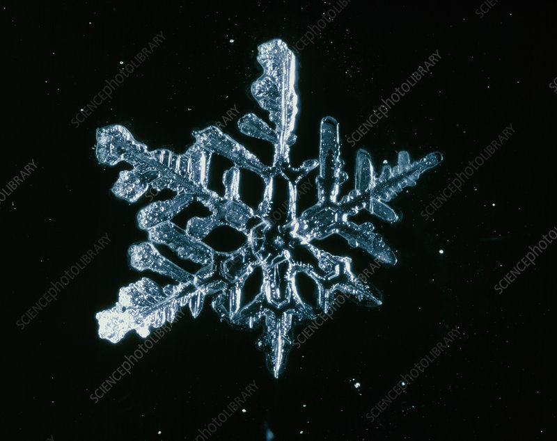 Macrophotograph of a snow crystal
