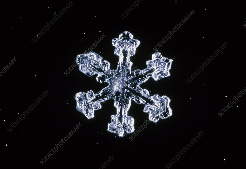 Macrophoto of snow crystal