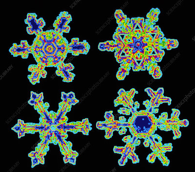 False-colour image of four snowflakes (resin cast)