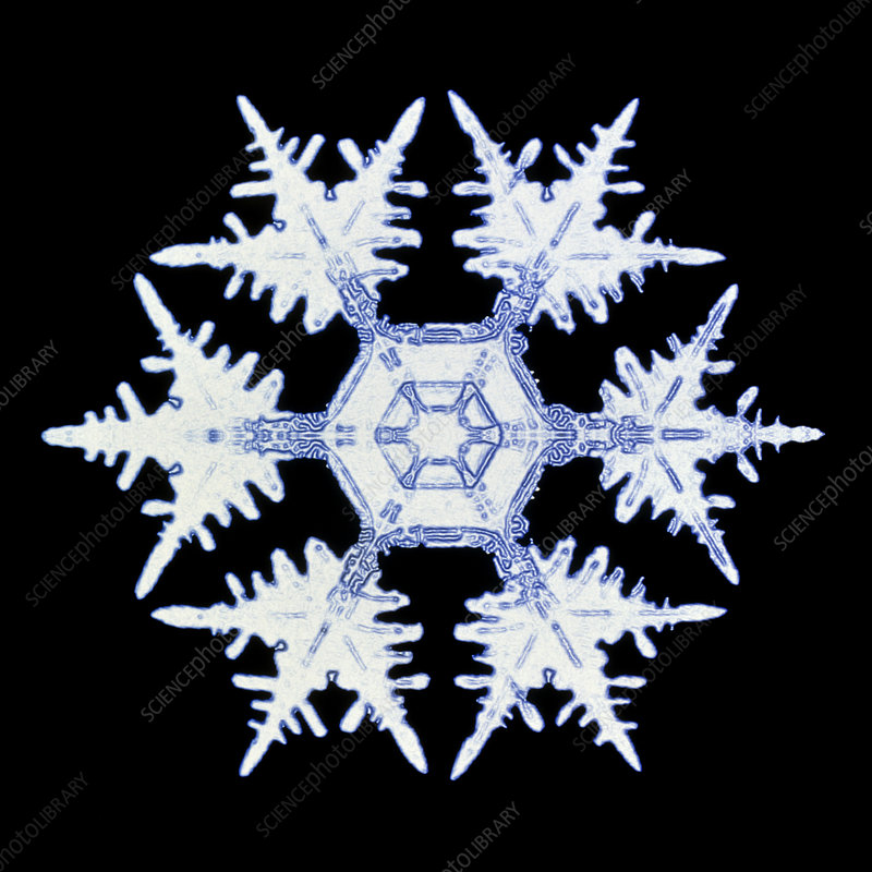 Computer enhanced image of a snow flake
