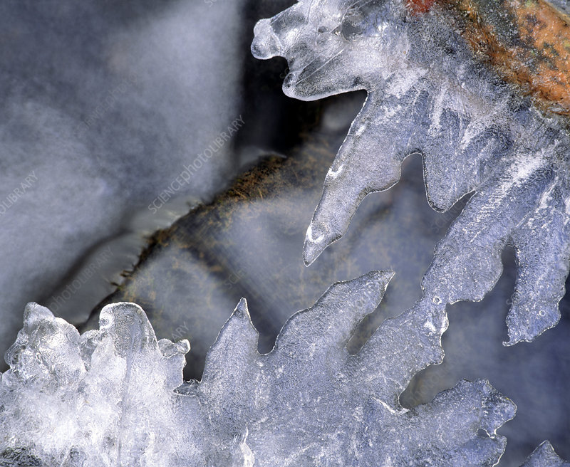Ice crystals above running water
