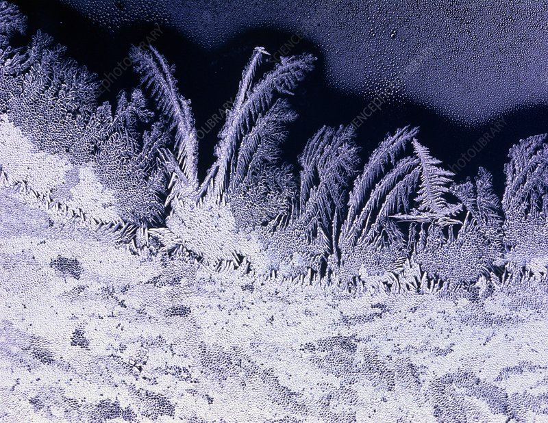 Frost 'flowers' on window