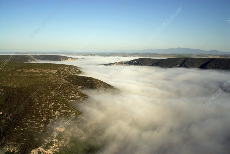 Morning fog, South Africa