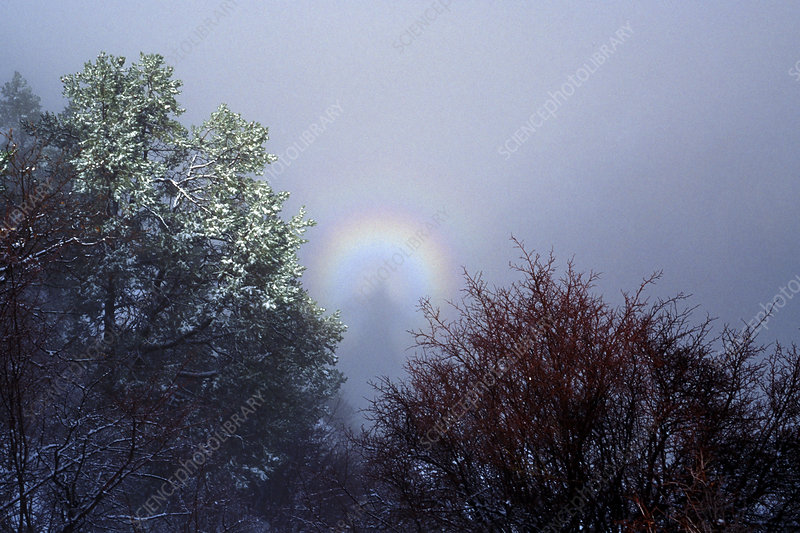 Glory and a Brocken spectre