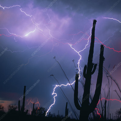 Lightning storm over Tucson, Arizona