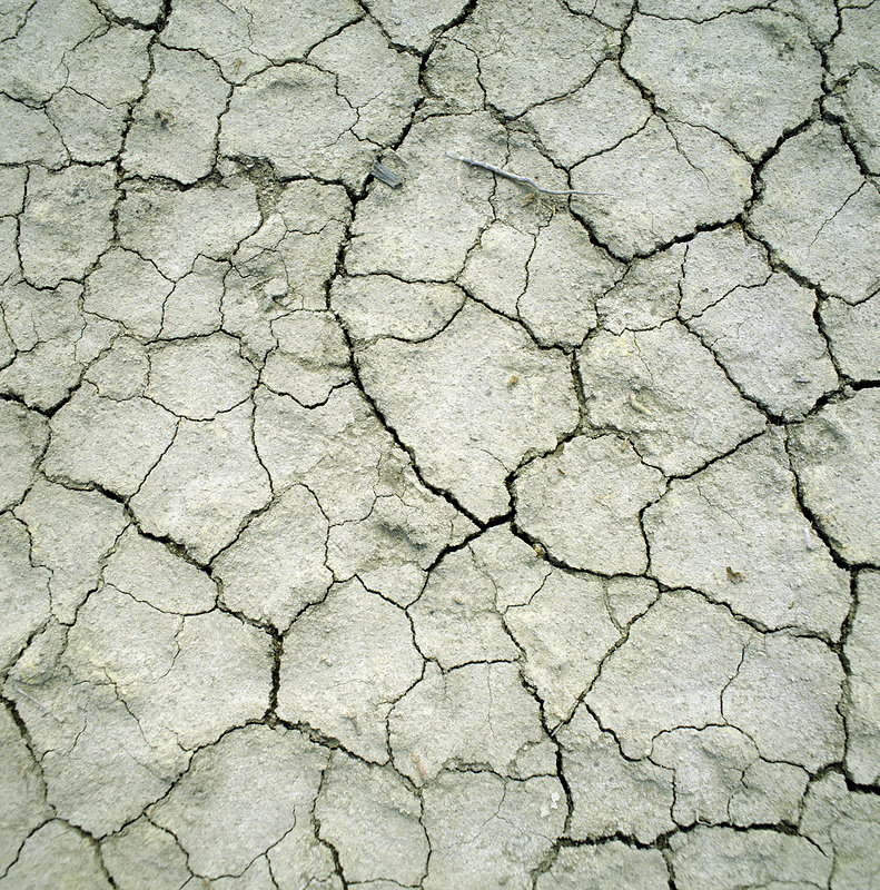 Dried mud of a river bed