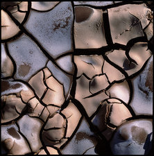 Cracked and dried river bed