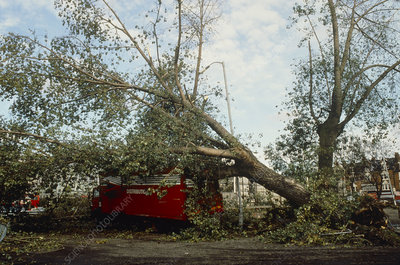 Damage after hurricane winds 1987.
