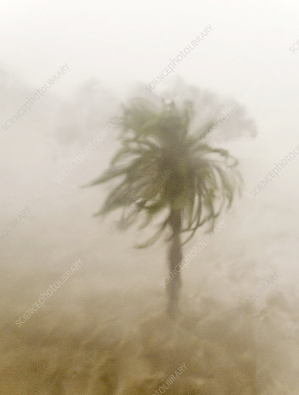 Hurricane Katrina hits Gulfport, USA