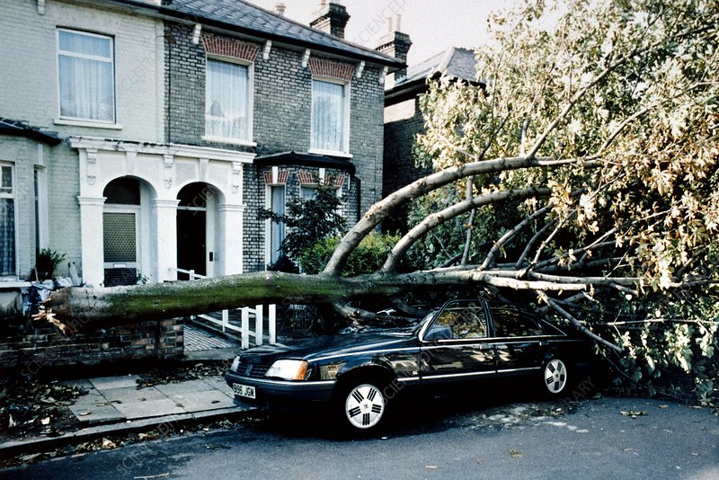Gale damage in London, 1987