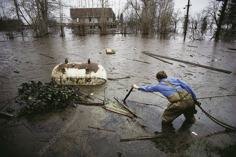 Man wading through flooded field