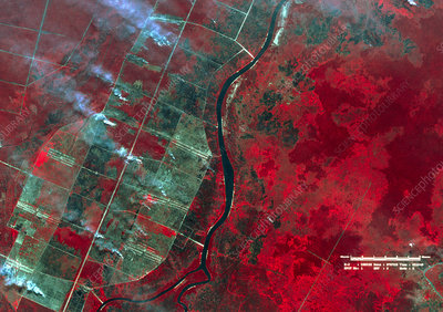 Infrared satellite image of Indonesian forest fire