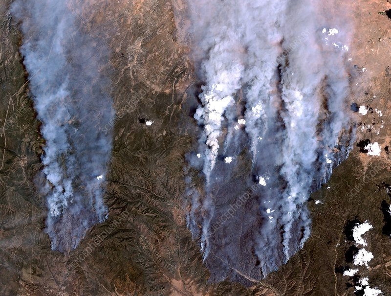 Arizona forest fires