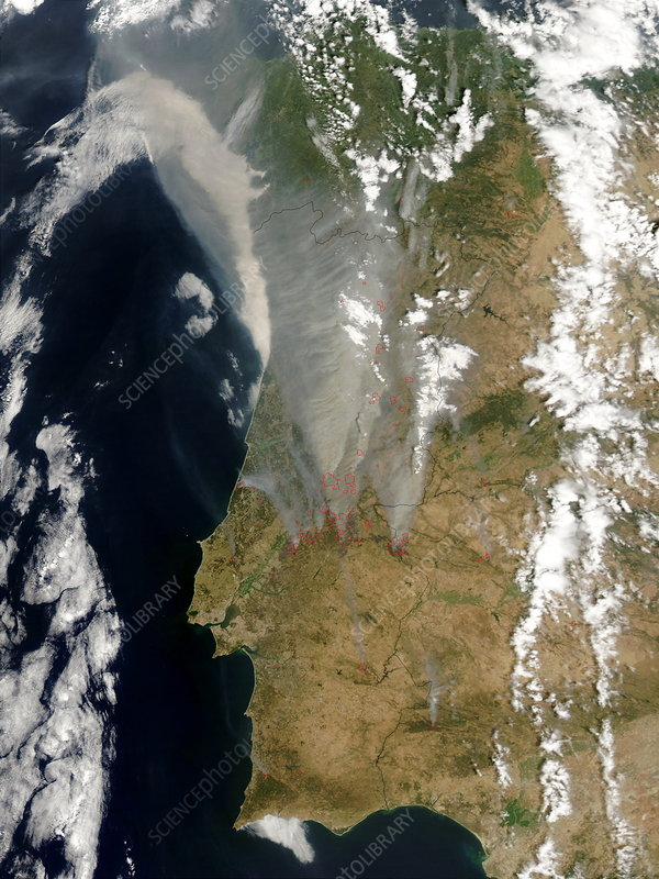 Forest fires, Portugal, 2003