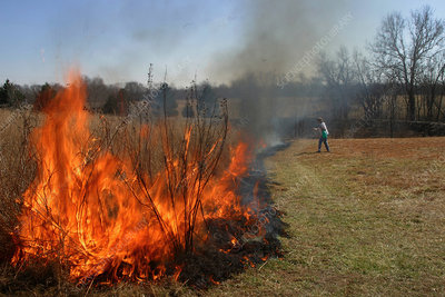 Controlled burning of the prairie