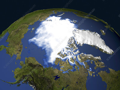 Arctic sea ice, 2003