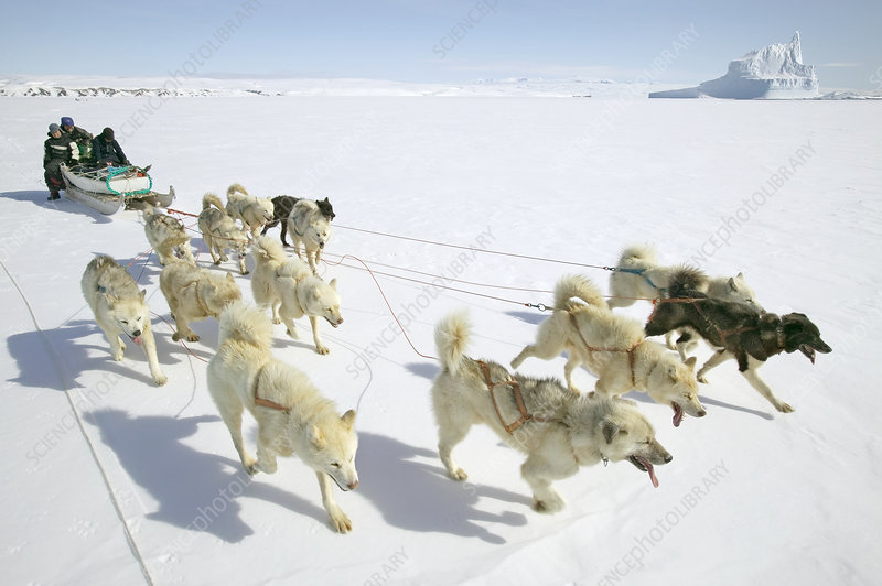 Arctic transport