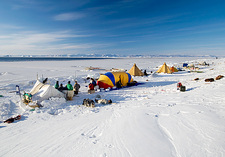 Seal hunting base camp, Greenland